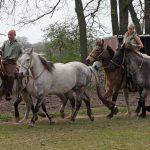Unsere Pferde und unsere Reitrer -Für alles zu haben