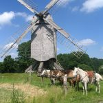Bockwindmühle vom Mühlenhof