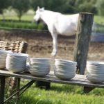 Hochzeitssuppe mit Blick auf die Pferde
