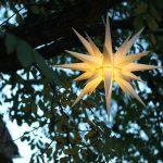 Leuchtender Stern im Baum