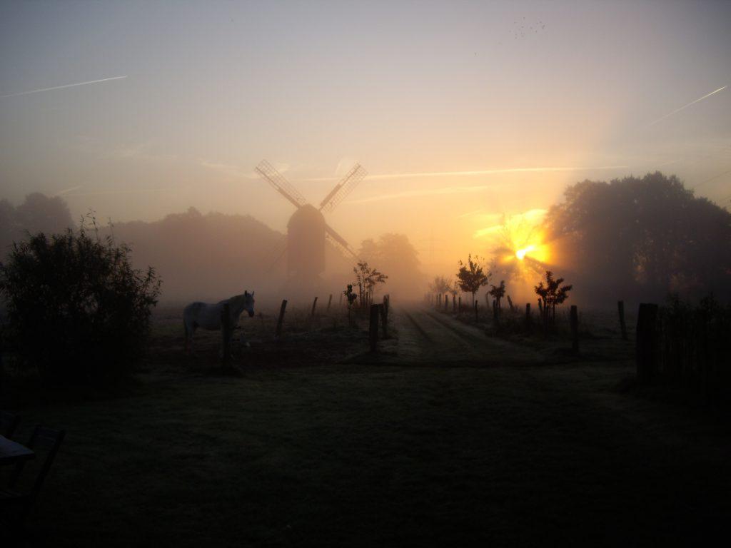 Winter - Wunderschöner Sonnenaufgang im Nebel am Mühlenhof