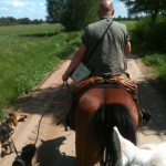 unterwegs zum Brokeloher Moorhof