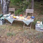 Picknick in der Heide