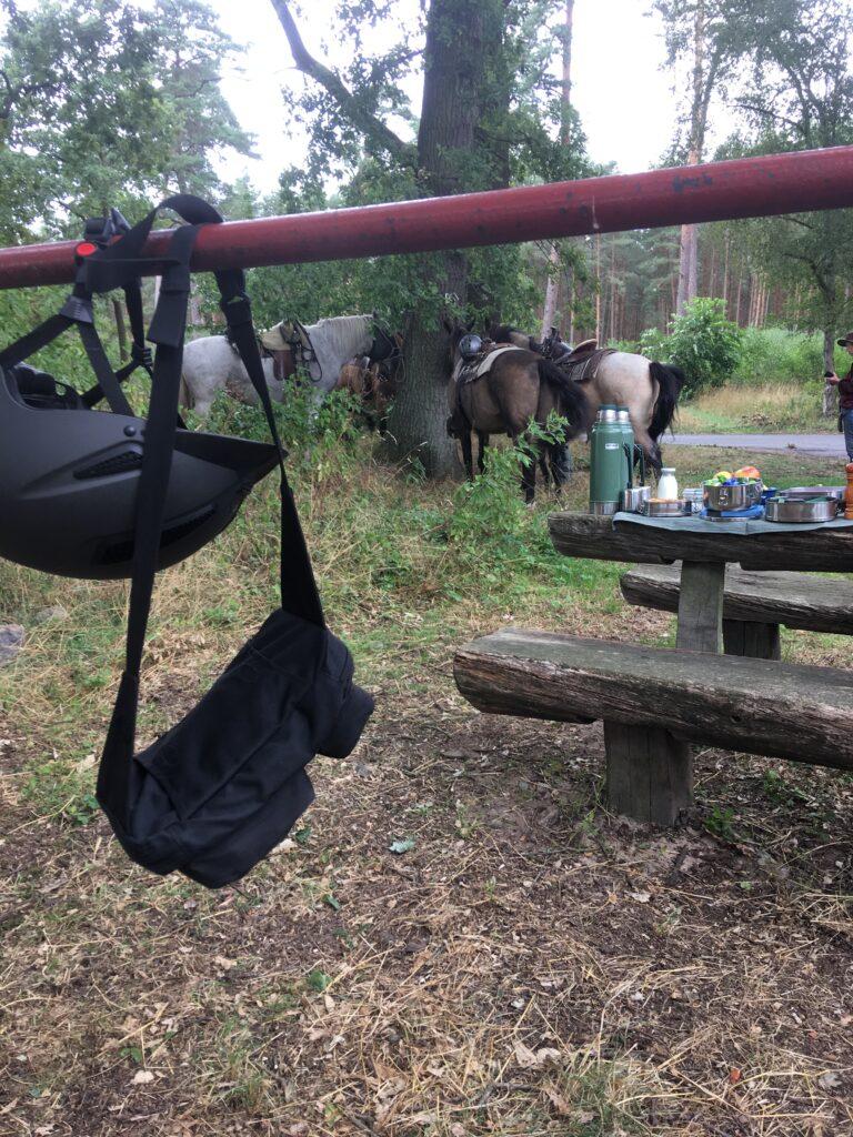 Picknick mit den Pferden