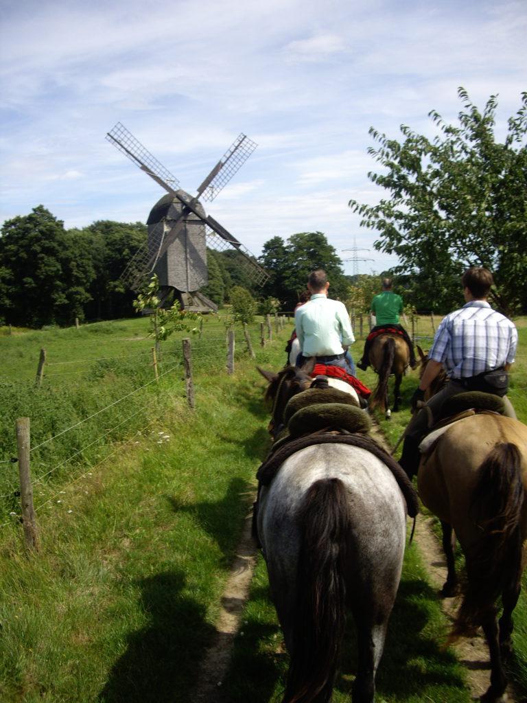 Los geht es - auf zur Tour mit den Pferden