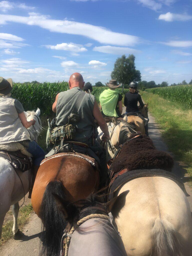 In der Gruppe auf den Pferden unterwegs in Niedersachsen